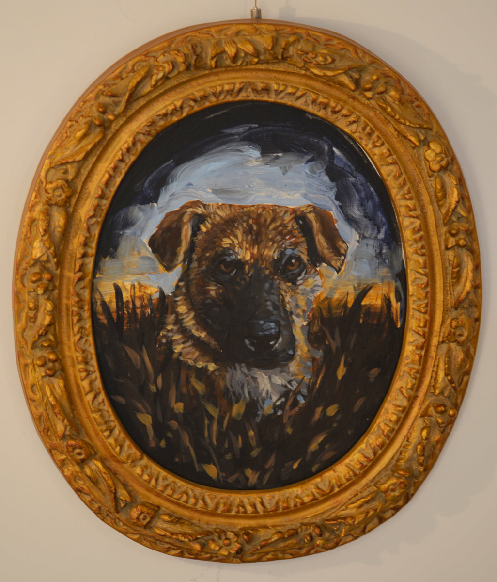 Portrait of a Rez Dog 6 (Fergie)