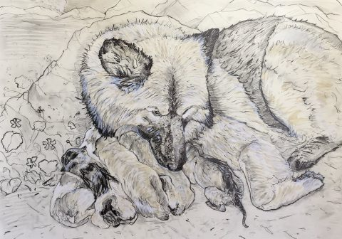 Portrait of Rez Dog Mother and Puppies