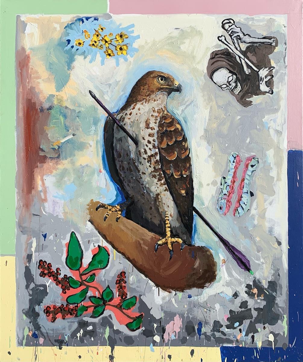 Hawk with Arrow in it (Apollo)