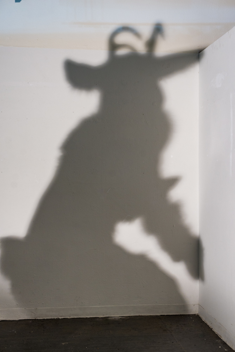 Atmus' Shadow